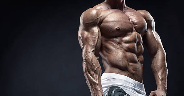 Articles Image Learn How Anabolic Steroids Work