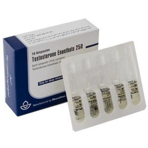 Testosterone Enanthate Image